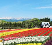 花と緑と温泉を楽しめる牧歌の里